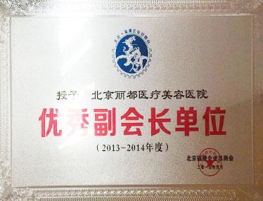 北京丽都整形医院优秀副会长单位